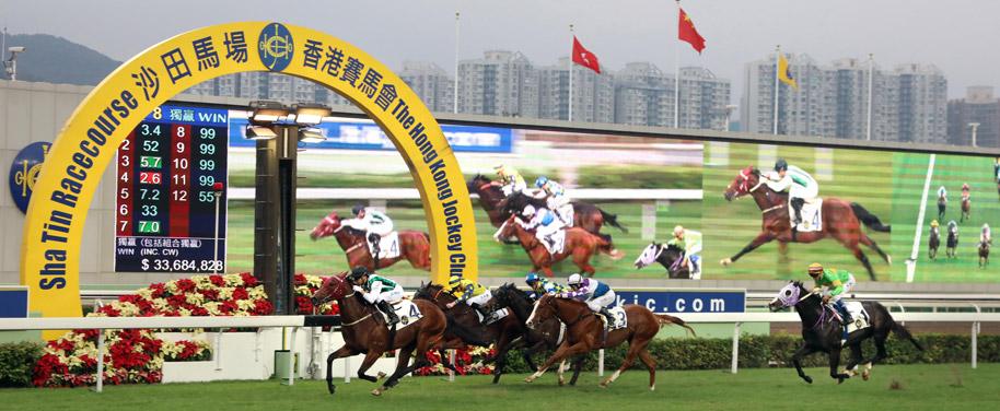 Sha Tin Racecourse - Go Racing - Racecourses & Entertainment - The