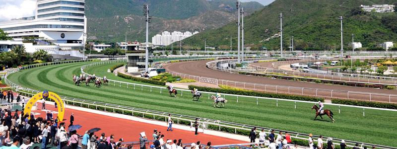 ผลการค้นหารูปภาพสำหรับ sha tin racecourse hong kong